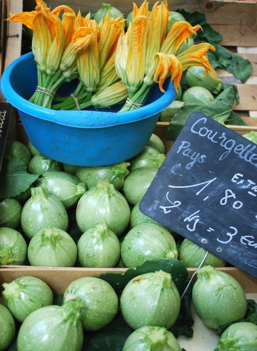courgettes_antibes